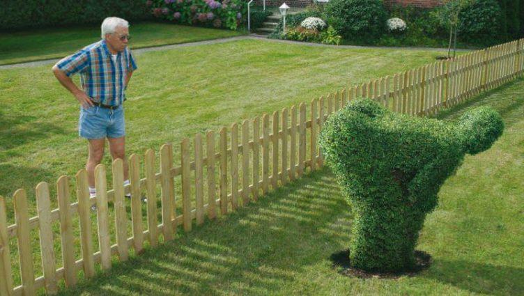 salut vecine